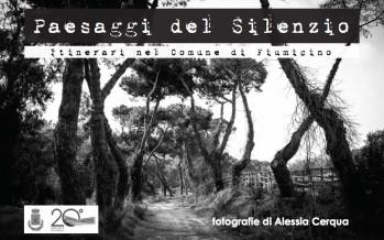 Paesaggi del silenzio