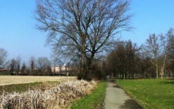 Bioghini: Riqualificazione parco Teramo – Milano