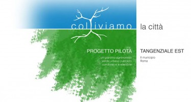 Progetto Pilota Tangenziale Verde