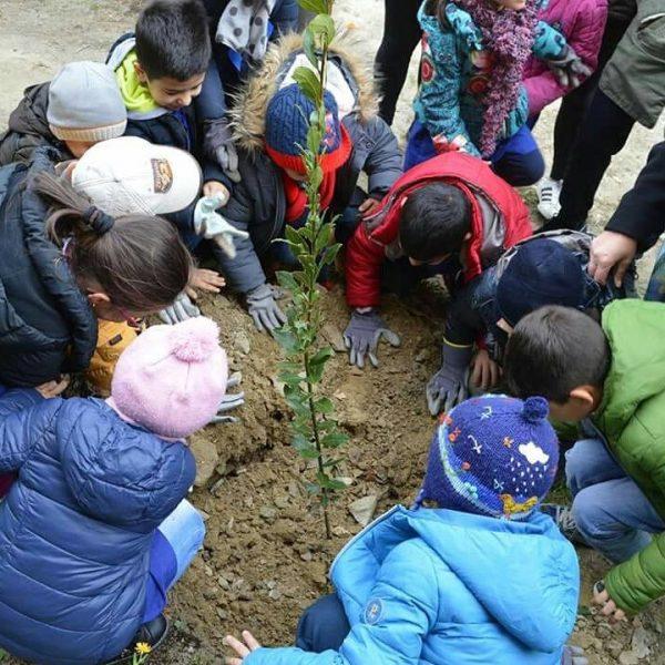 Le nuove sfide della scuola diffusa: didattica all'aperto, outdoor education, alleanza educativa tra scuola e territorio, comunità educante, scuola di prossimità, e il protagonismo dei parchi.